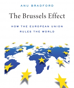 The Brussels Effect book cover